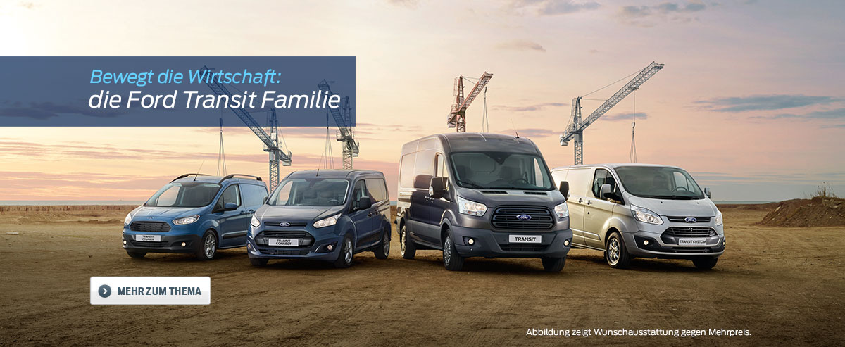 Ford Transit Family